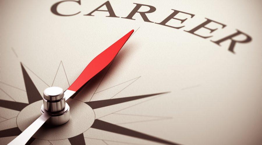 Deciding On A Career